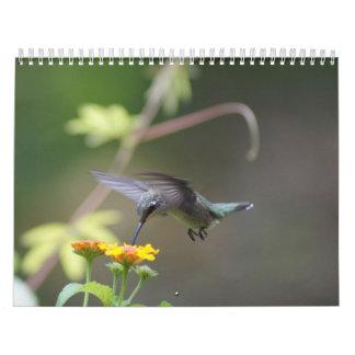 Hummingbirds Year 'Round Wall Calendar