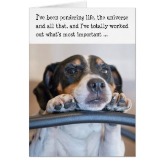 Humorous Birthday Card - Dog Pondering Life