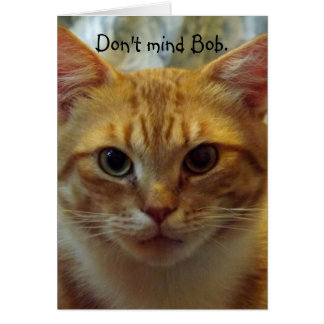 Humorous Cat Birthday Card