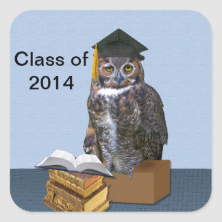 Humorous Class of 2014 Graduation Owl Square Sticker