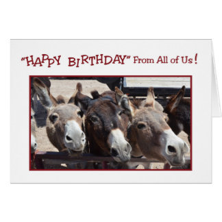 Humorous Donkey Group Birthday, From All of Us Card