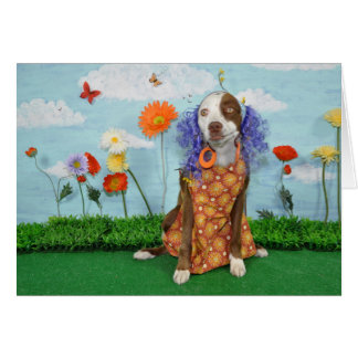 Humorous photo of dog in clothing, birthday card