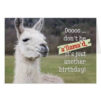 Humourous Birthday Card - The Happy Llama