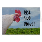 Humourous Chicken Rise and Shine Happy Birthday Card