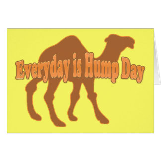 Hump Day Camel Greeting Cards
