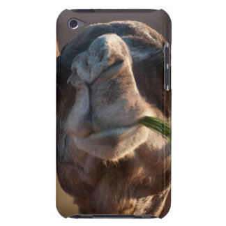 Hump Day Camel Feasting on Green Grass Barely There iPod Cover