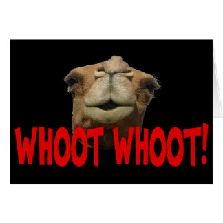 Hump Day Camel Whoot Whoot Greeting Card