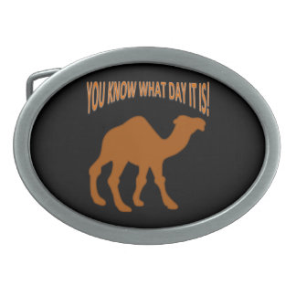 HUMP DAY Hump Day camel Oval Belt Buckles