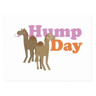 Hump Day Postcard