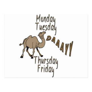 Hump Day Week Days Postcard