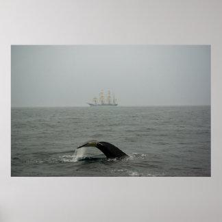 Humpback Whale and Tall Ship 2 Print