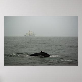 Humpback Whale and Tall Ship Print