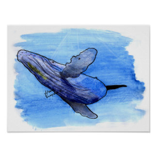humpback whale drawing poster