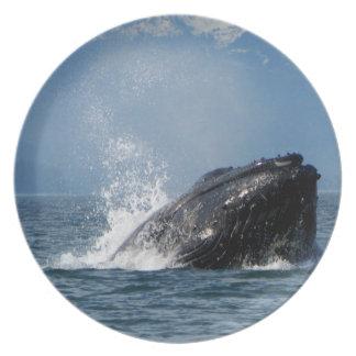 Humpback Whale Feeding Dinner Plate