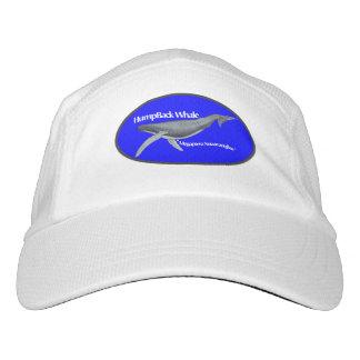 humpback whale hat