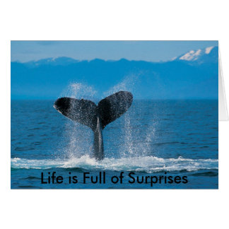 Humpback Whale, Life is Full of Surprises, Life... Card