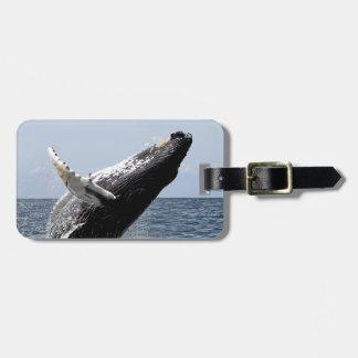 Humpback whale luggage tag