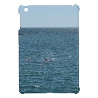 HUMPBACK WHALE MACKAY QUEENSLAND AUSTRALIA iPad MINI CASE