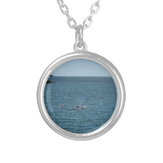 HUMPBACK WHALE MACKAY QUEENSLAND AUSTRALIA SILVER PLATED NECKLACE