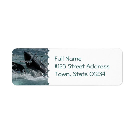 Humpback Whale Mailing Label