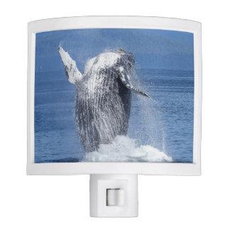 Humpback whale night light