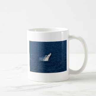 HUMPBACK WHALE QUEENSLAND AUSTRALIA COFFEE MUG