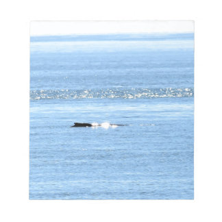 HUMPBACK WHALE QUEENSLAND AUSTRALIA NOTEPAD