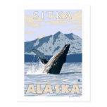 Humpback Whale - Sitka, Alaska Post Card