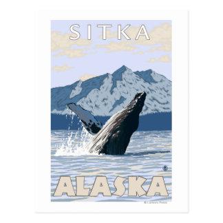 Humpback Whale - Sitka, Alaska Postcard