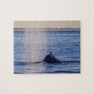 Humpback Whale Sunset Surfers Paradise Jigsaw Puzzle