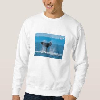 Humpback Whale Sweatshirt