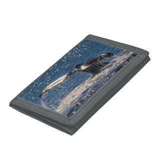 Humpback Whale Tail Fluke Surfers Paradise Trifold Wallet