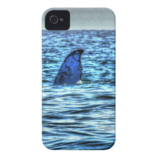 HUMPBACK WHALE TAIL QUEENSLAND AUSTRALIA ART Case-Mate iPhone 4 CASE