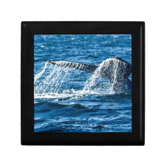 Humpback Whale Washington State Keepsake Boxes