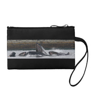 Humpback whales feeding change purse