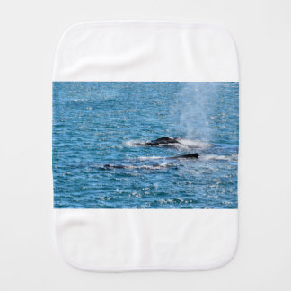 HUMPBACK WHALES MACKAY QUEENSLAND AUSTRALIA BURP CLOTH