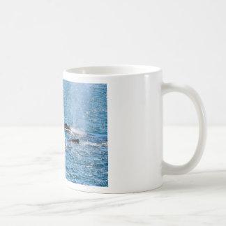 HUMPBACK WHALES MACKAY QUEENSLAND AUSTRALIA COFFEE MUG