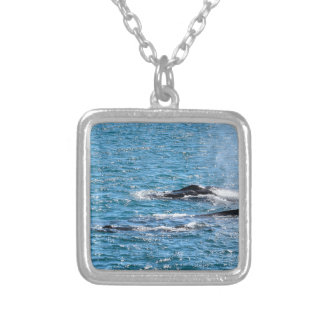 HUMPBACK WHALES MACKAY QUEENSLAND AUSTRALIA SILVER PLATED NECKLACE
