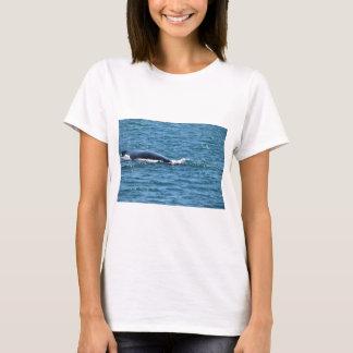 HUMPBACK WHALES MACKAY QUEENSLAND AUSTRALIA T-Shirt