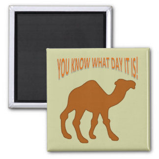 HUMPDAY ! CAMEL HUMP DAY YOU KNOW WHAT DAY IT IS SQUARE MAGNET