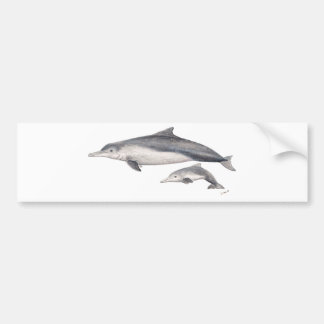 Hunchbacked dolphin of Australia Bumper Sticker