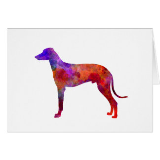 Hungarian Greyhound in watercolor Card