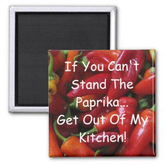 Hungarian Paprika #2 Kitchen Square Magnet