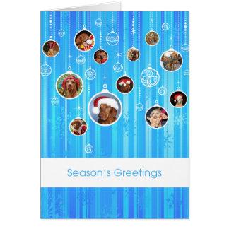 Hungarian Vizsla Christmas Card 009