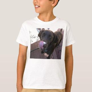 Hungry Brown Dog T Shirts