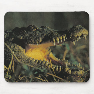 Hungry Croc Mouse Pad