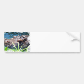 Hungry Hippo Bumper Stickers