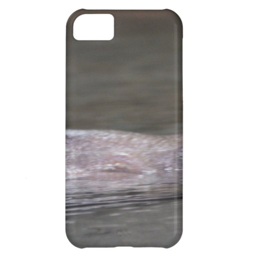 Hungry Hippo iPhone 5C Case