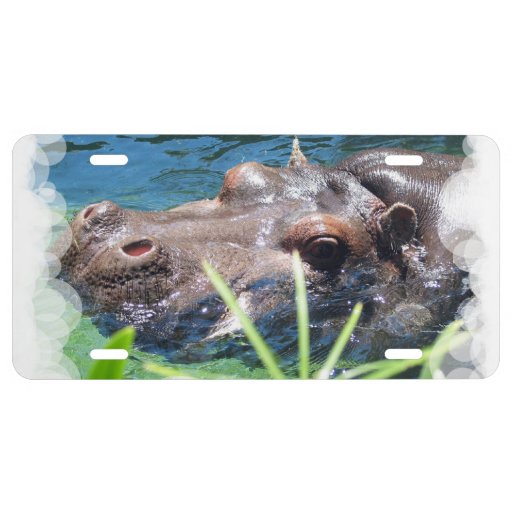 Hungry Hippo License Plate