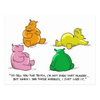 Hungry Hippos! - Postcard